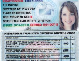 Indian Driving Licence Back Side - On Log Wall