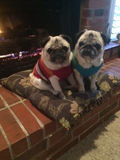 blog tillie and tess