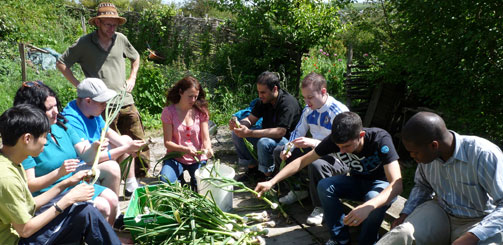 Volunteers with the Food Project, Brighton