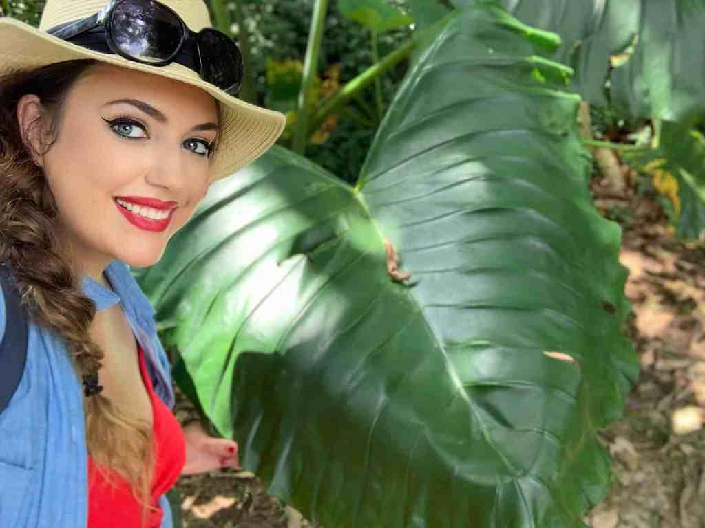 Photos of the Amazon: plants bigger than me
