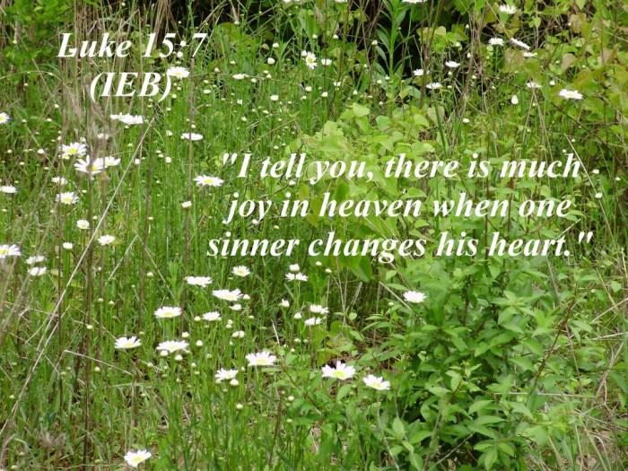 Luke 15:7 Photo
