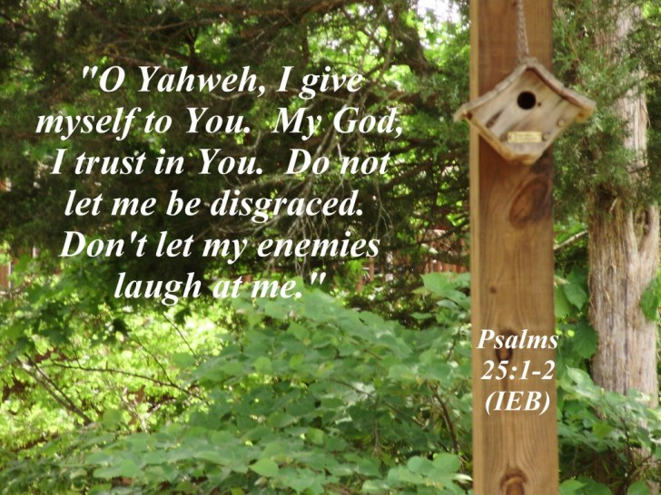 Psalm 25:1-2 Image
