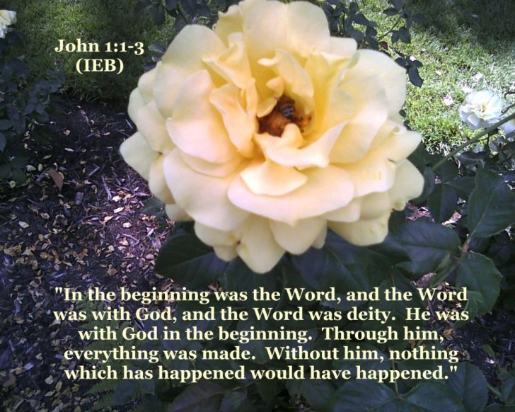 In The Beginnig Was The Word - John 1_1-3 IEB - image