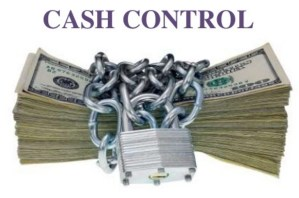 Cash Control: Meaning, Importance, Steps of Cash Control