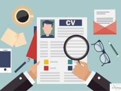 Types of Resume: Chronological, Functional, Combination (Which One is Best)
