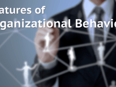 6 Features of Organizational Behavior (Characteristics or Nature of OB)