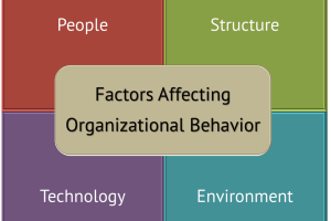 4 Key Forces Affecting Organizational Behavior
