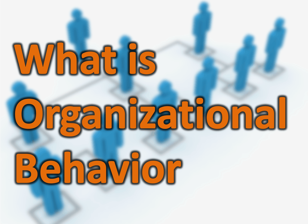Organizational Behavior Explained Definition Importance Nature Model