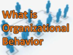 Organizational Behavior: Definition, Importance, Nature, Model