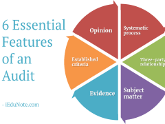 6 Essential Features of an Audit