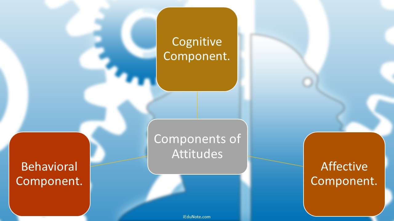 Components of Attitudes