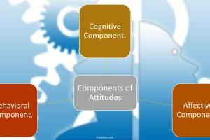 3 Components of Attitudes