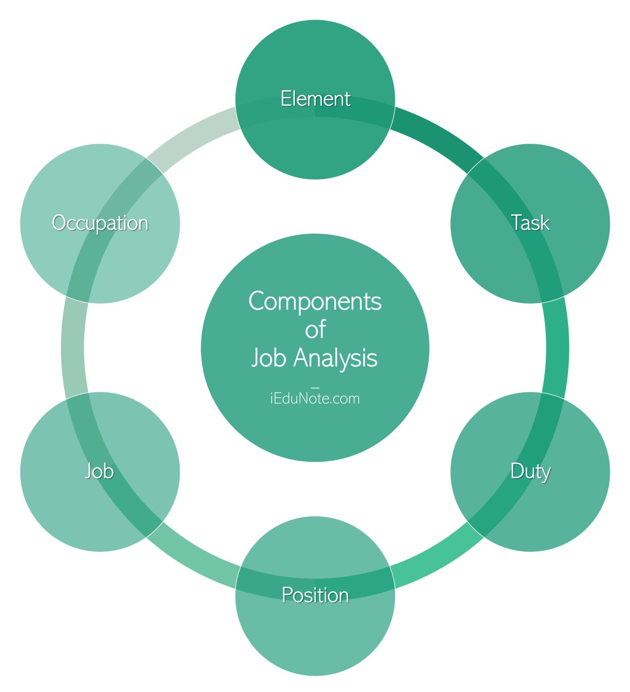 Components of Job Analysis