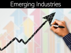 Emerging Industries: Strategies For Emerging Industries
