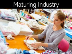 Maturing Industry: Strategies for Maturing Industry