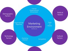 Marketing Environment: Macro and Micro Marketing Environment