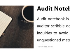 Audit Notebook