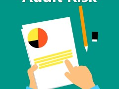 Audit Risk: Components of Audit Risk