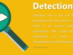 Detection Risk