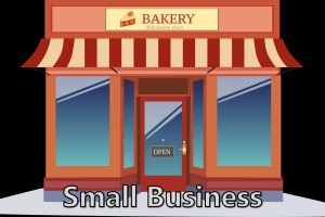 Small Business: Characteristics, Strengths, Reasons for Failure in Small Business
