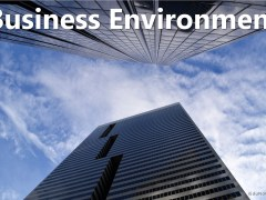 Business Environment: Features, Importance