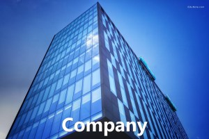 What is a Company? Definition, Characteristics, Advantages, Disadvantages