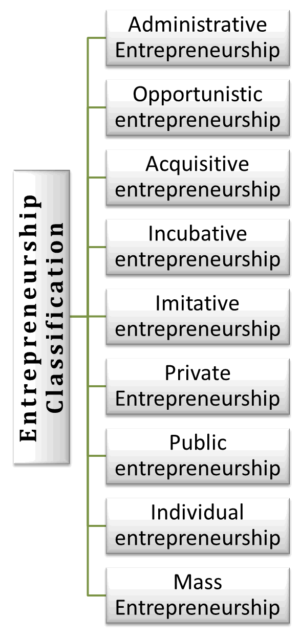 Entrepreneurship is classified in Nine Types