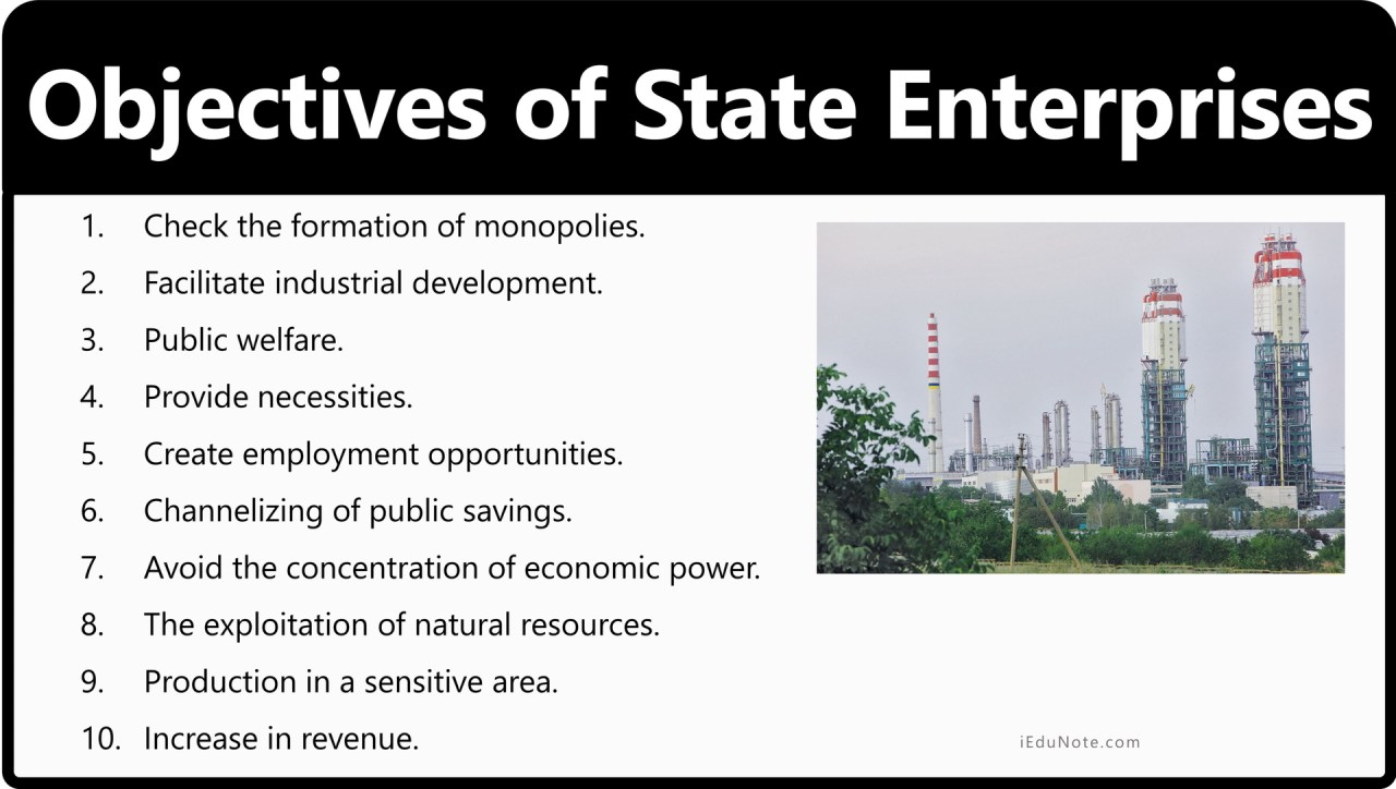 Objectives of State Enterprises