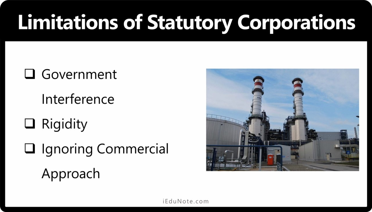 Disadvantages of Statutory Corporations