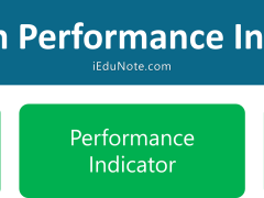 Program Performance Indicators