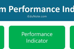 Program Performance Indicators
