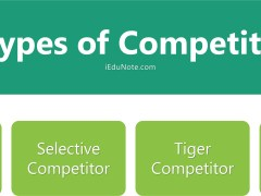 4 Types of Competitors