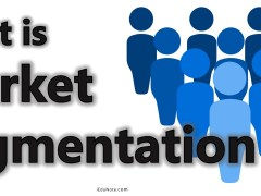 Market Segmentation: Definition, Meaning, Bases, Importance, Types