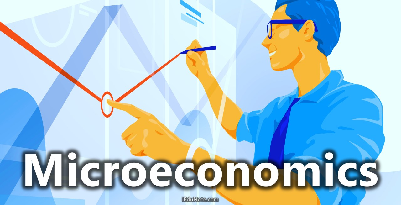 Microeconomics Definition Meaning