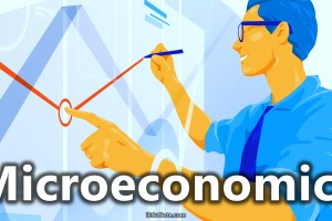 Microeconomics: Definition, Meaning, Theories, Assumptions