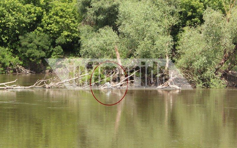Μια φουσκωτή βάρκα εγκλωβισμένη στα κλαδιά των δέντρων στον ποταμό Έβρο.