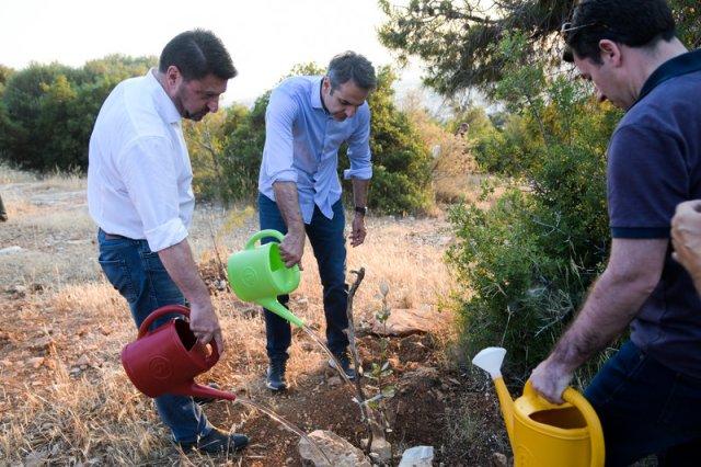 Ο Κυριάκος Μητσοτάκης ποτίζει ένα φρεσκοφυτεμένο δέντρο