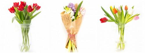 flori pentru luna martie