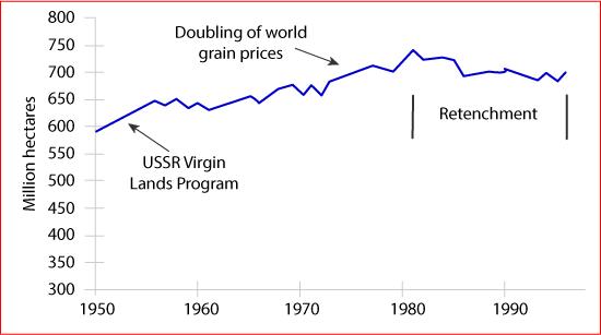 World grain harvested area