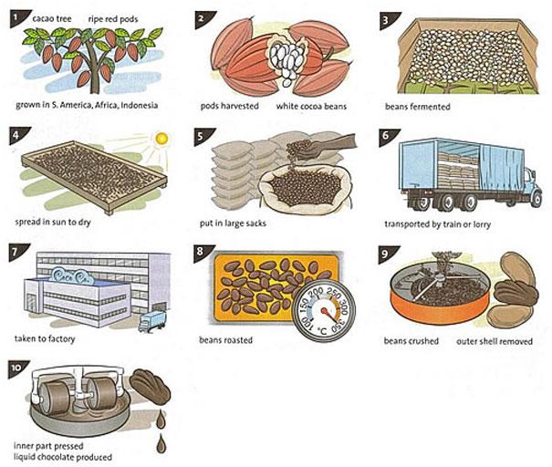 Chocolate making Process