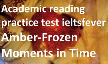 Academic reading practice test 6 Amber-Frozen Moments in Time