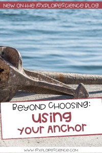 Beyond Choosing An Anchor: USING An Anchor