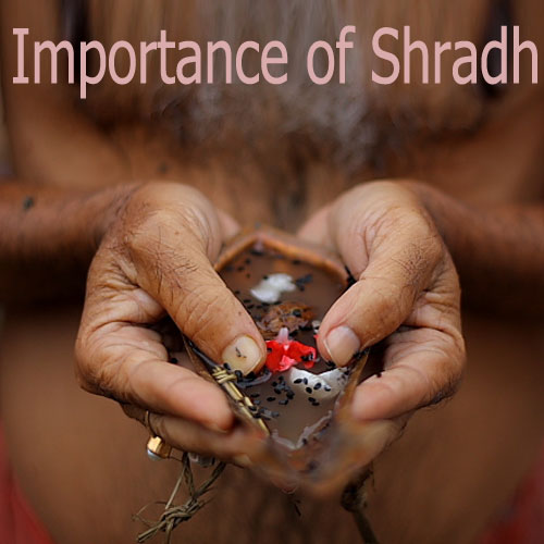Things to do during Shradh