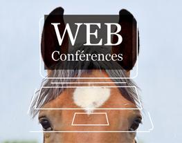 Webconference thème cheval