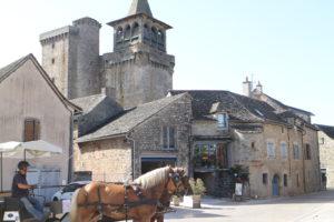 ROD-Attelage-Sainte-Radegonde