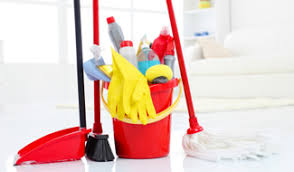 cleaning and sanitation materials
