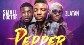 Small Terry- Pepper ft Zlatan X Small Doctor mp3.