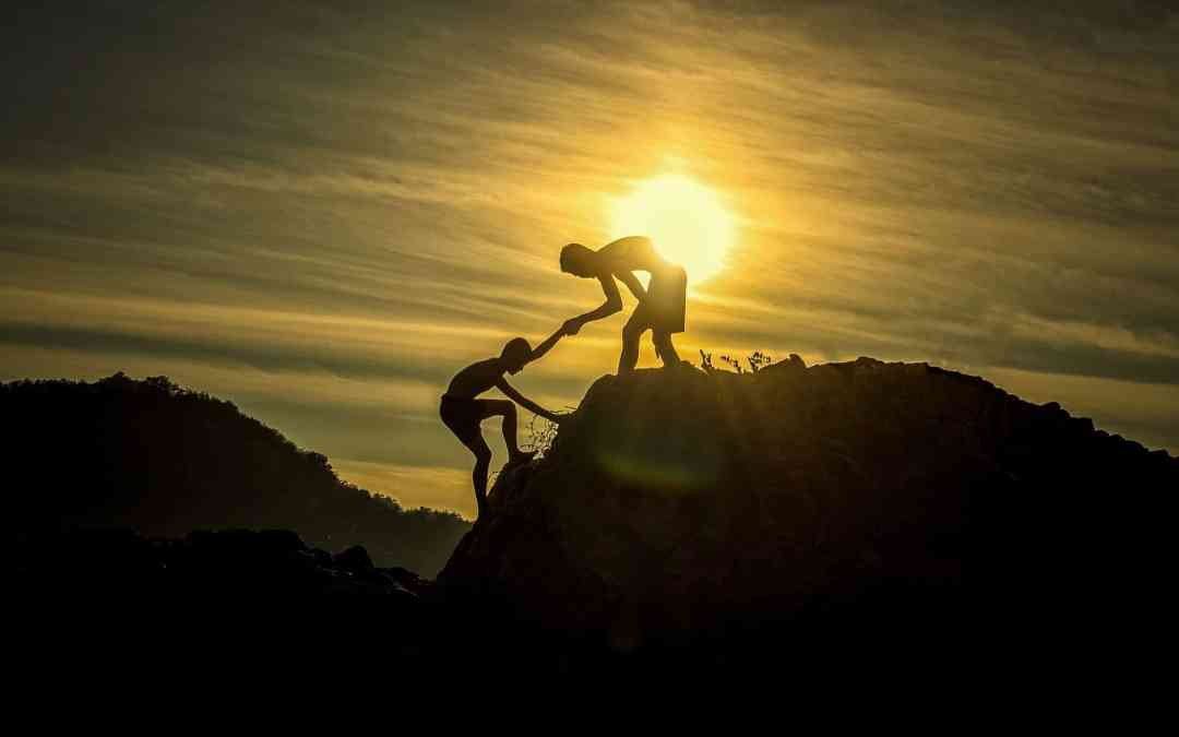 The Importance Of Mentorship & Support