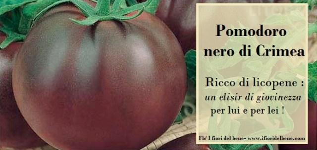 pomodoro-nero-di-crimea