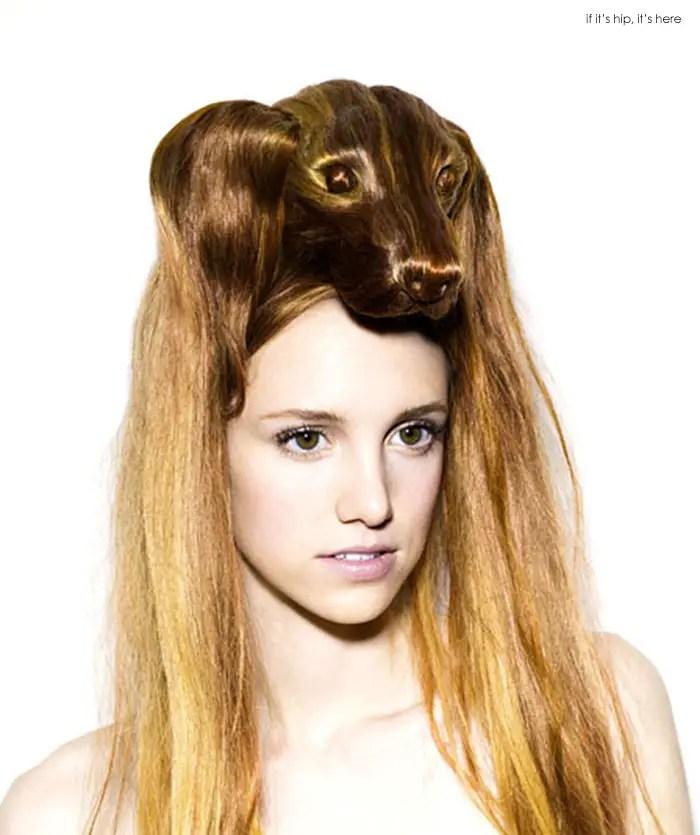 animal wig dog IIHIH 9